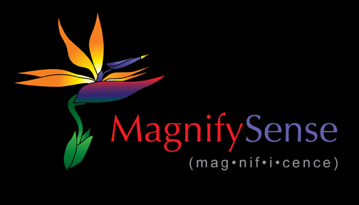 MagnifySense