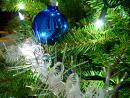 xmas pine