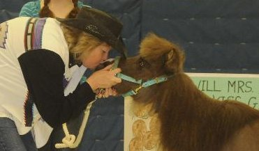 GELC Horse Kissing