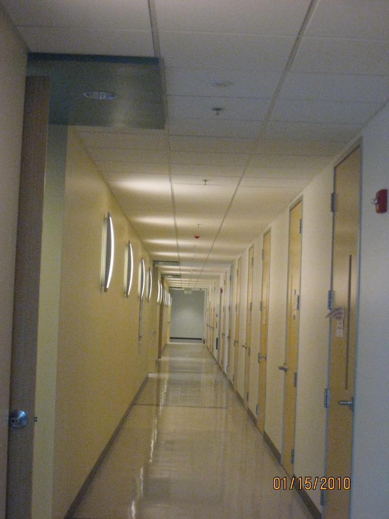 Hallway - stem cell