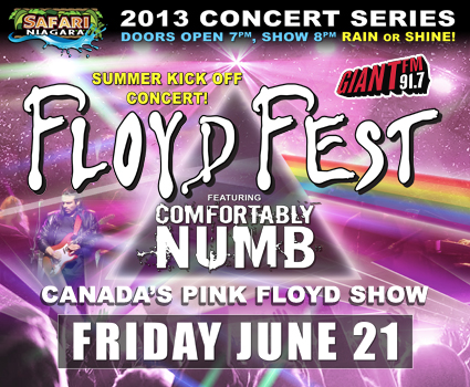 Floyd Fest Eticket
