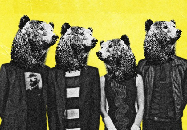 BEAR HEADS PHOTO