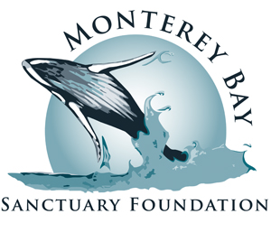 Monterey Bay Sanctuary Foundation Logo