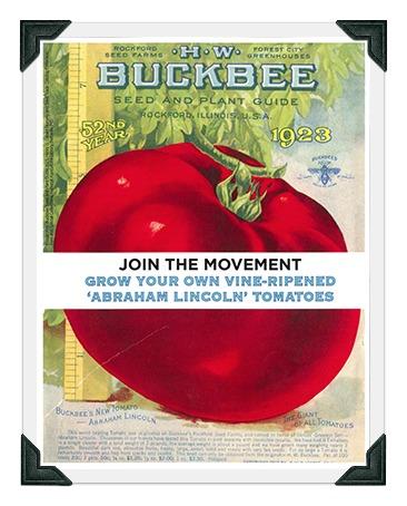 Lincoln tomato poster