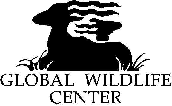 Wild Center Logo Gwc Logo