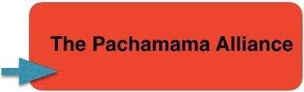 Pachamama Alliance button