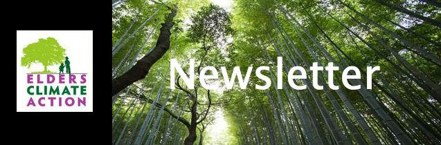 ECA Newsletter Banner_gif