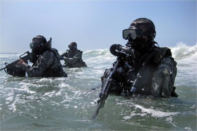 combat divers