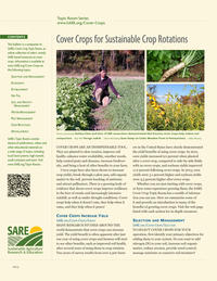 SARE Cover Crops Brief