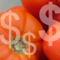 Tomato Profit