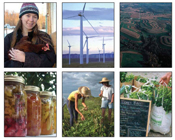 Building Sustainable Farms cover photo