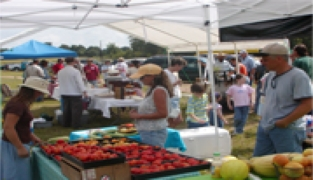 Homesweetfarm market days