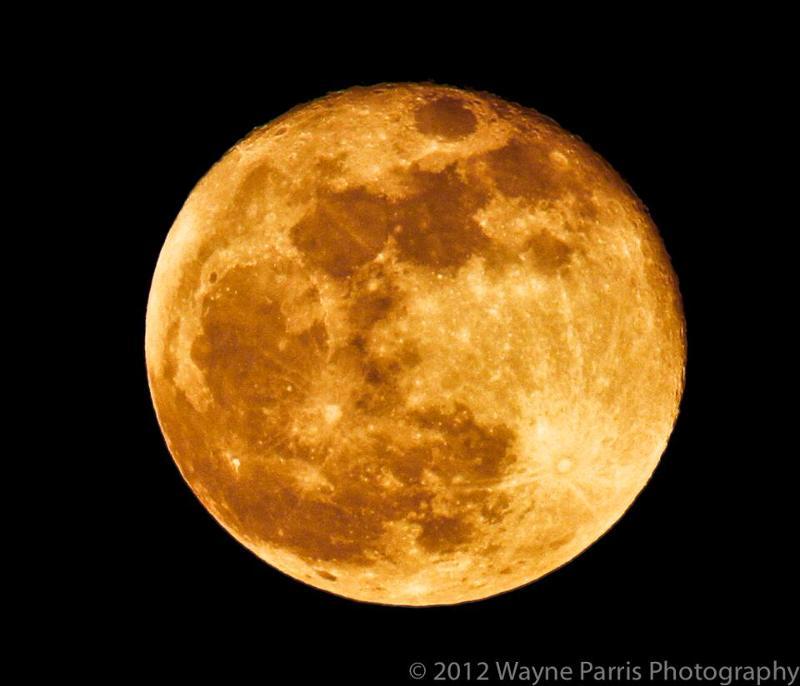 full moon wayne parris