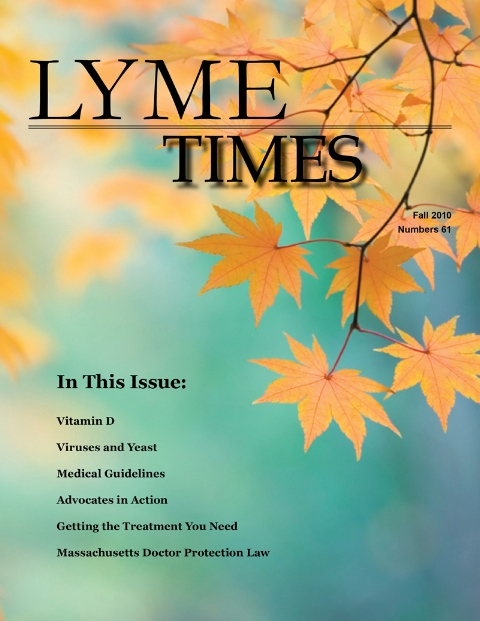 Lyme Times cover image