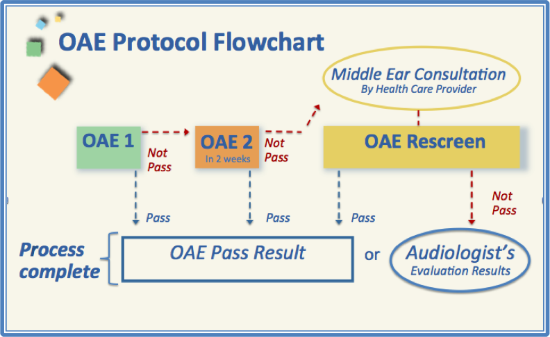 December Probes & Tips - Understand Basic Ear Anatomy and the OAE ...