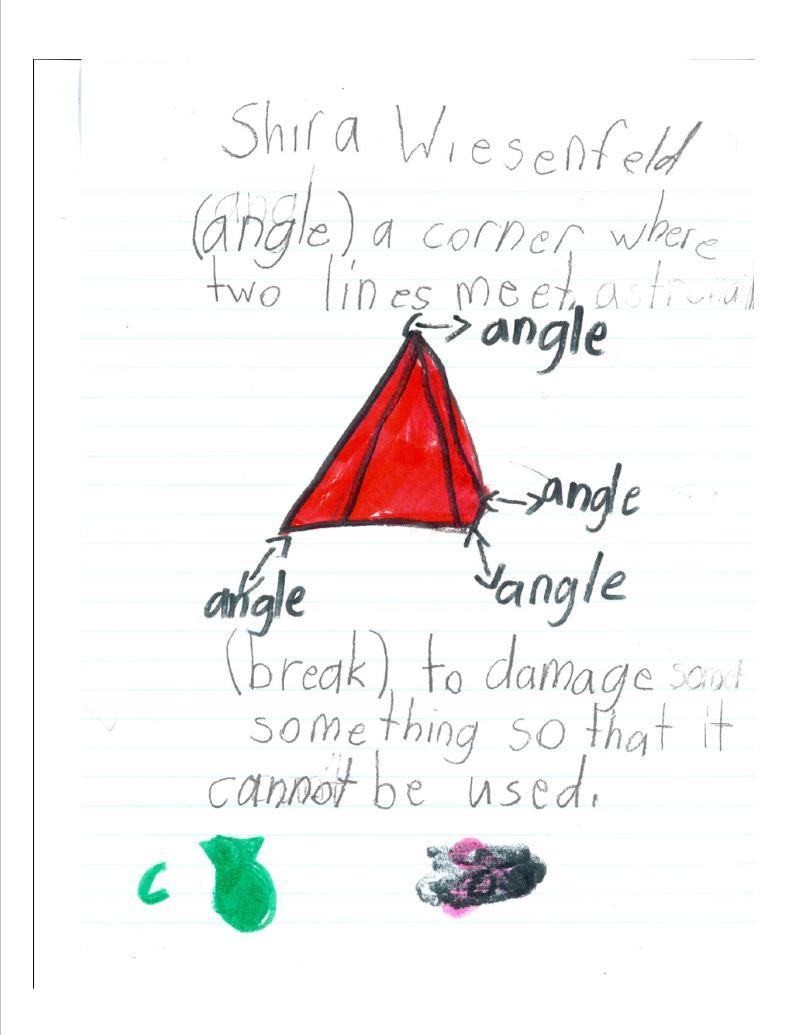 Shira Wiesenfeld Angles