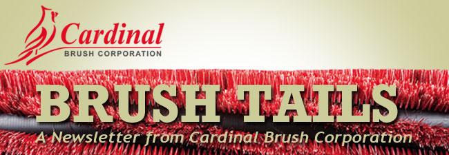 brushtails mast