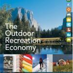 OIA report cover