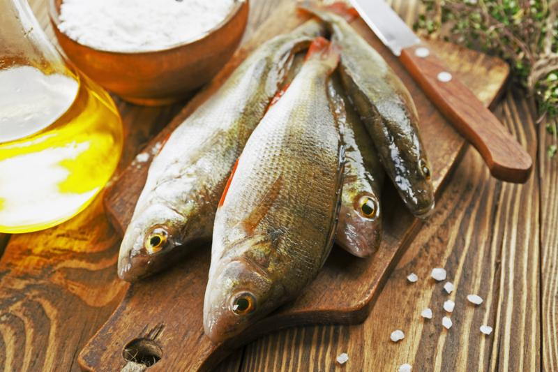 Fresh fish perch on a wooden table