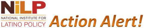 NiLP Action Alert!