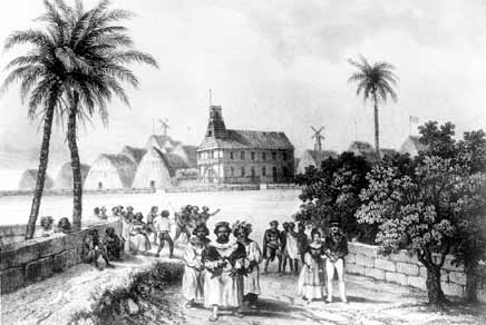 the hawaiian missionaries Modern hawai'i, like its colonial overlord, the united states of america, is a settler society our hawaiian people, now but a remnant of the nearly one million natives present at contact with the west in the 18th century, live at the margins of our island society less than 20% of the current population in hawai'i, our native people have.