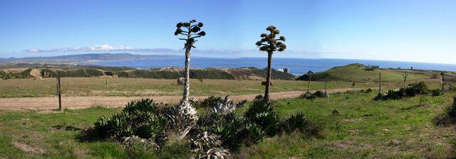Ocean View Baja Lots