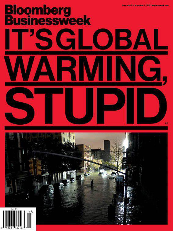 cover - it's climate change stupid