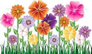 Your Flower Garden!