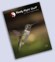 2009 RRS catalog