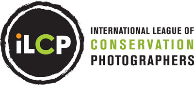 ILCP Logo