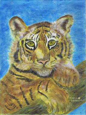 Tiger by Susan Lockhart