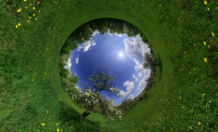 Spring World - 2008 Saulius Lukse