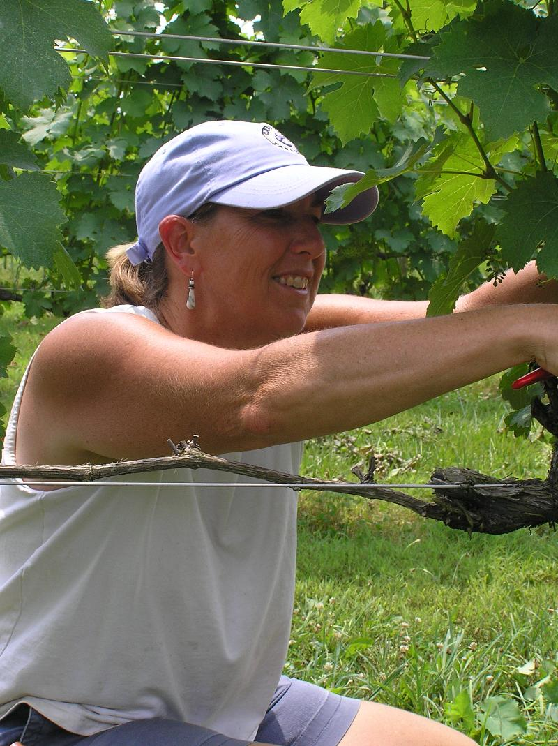Joanne in the Vineyard 1