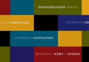 Diversity website areas