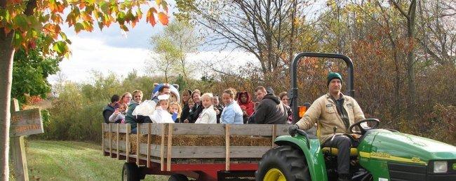hayride at Stark Parks Family Fall Fest