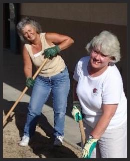 Susan-Sally Cleveland School work proj