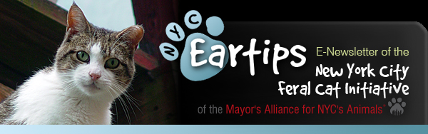 NYC Eartips: E-Newsletter of the New York City Feral Cat Initiative