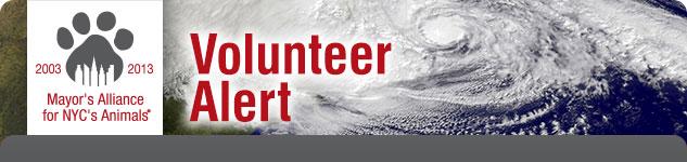 Volunteer Alert