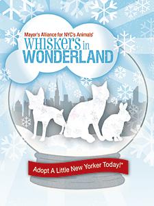 Whiskers in Wonderland - December 17 & 18, 2011