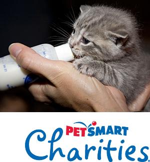 Sponsored by PetSmart Charities (Photo by Rick Edwards)