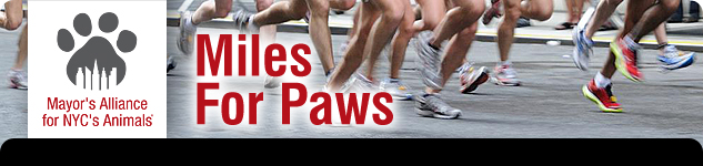 Miles For Paws