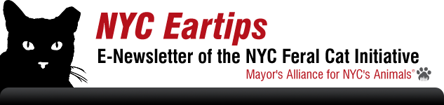 NYC Eartips: The E-Newsletter of the New York City Feral Cat Initiative