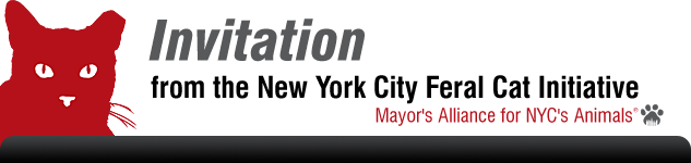 Invitation from the New York City Feral Cat Initiative