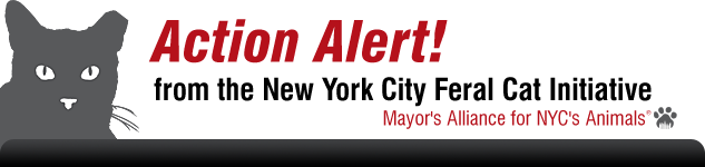 Action Alert from the New York City Feral Cat Initiative