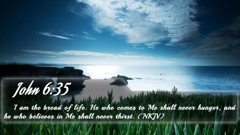 Biblequote 7 Скачать Бесплатно