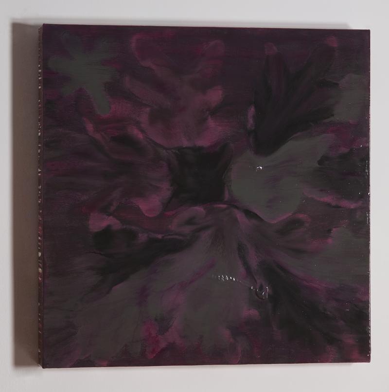 Kate MacKinnon, 5 Chrysanthemums Ran Away 3, oil on canvas
