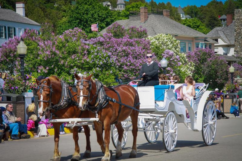 Mackinaw Island Lilac Festival