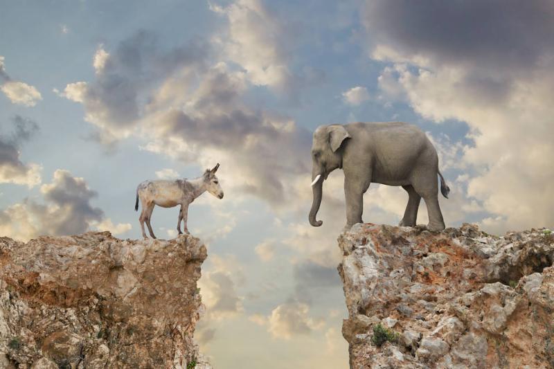 political divide