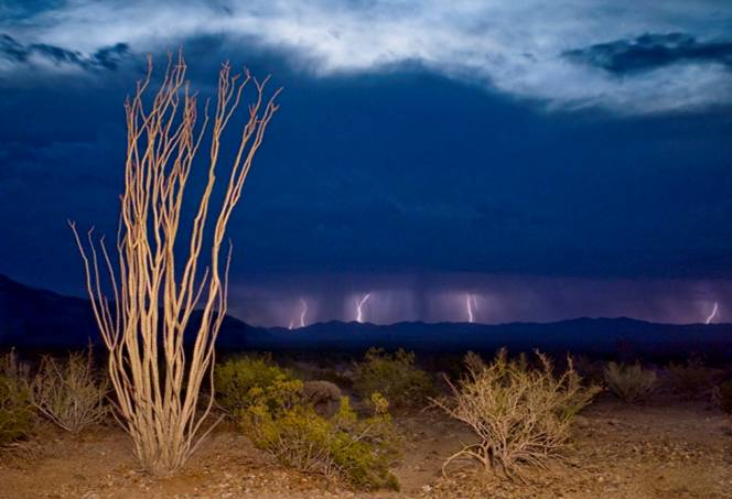 Paul Lightning Image
