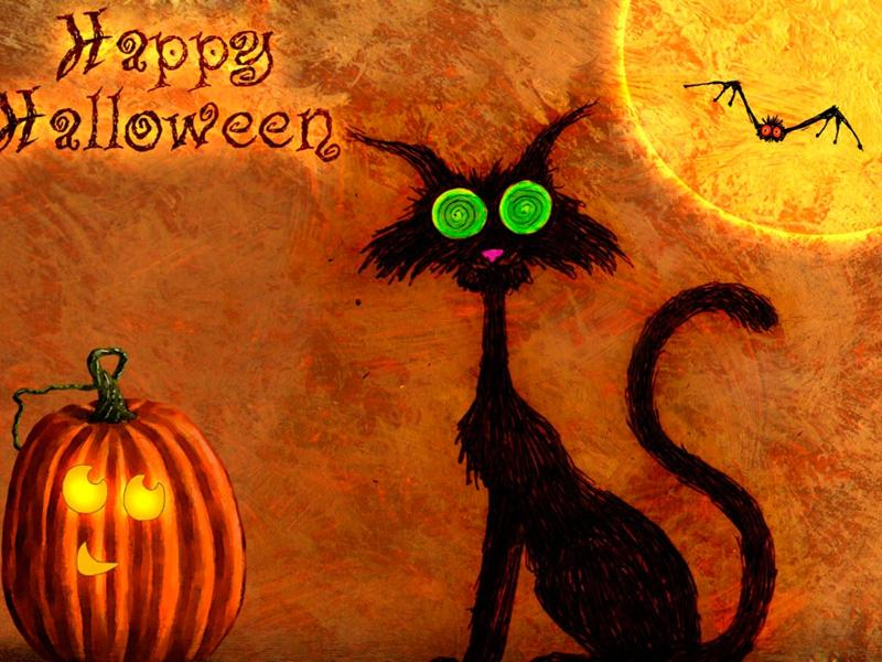 Halloween Cat Header